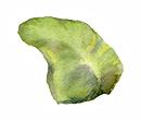 island-lanai